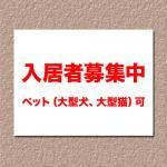 pet_ok.jpg